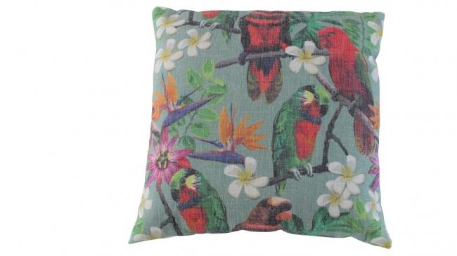 Kleur 3001 papegaai seagreen